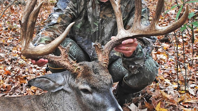 Desoto County Deer Is New State Record Archery Buck