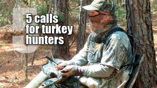 5 calls for turkey hunters