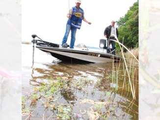 Old school Mississippi crappie fishing means using a jig pole to search for crappie in the grass and is still a top producer for slabs this month. An 11- or 12-footer will allow anglers to reach deeper into the vegetation to get to fish others miss.