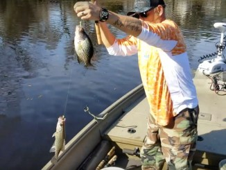 Capt. Todd Vick shares tips on using tandem rigs for crappie.