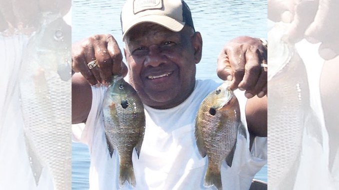 Catching bedding bream is as easy as swinging a cricket or worm into a pond.