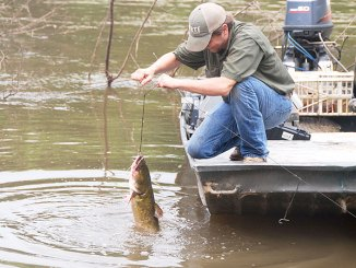 Trotlining is a fun and productive way to fish for river catfish during the summer.