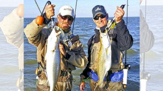 Go with your gut? Fishing in the info age