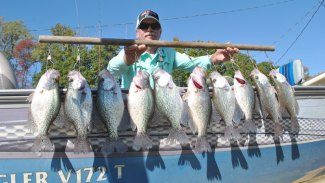 Dogwoods, crappie are in vogue
