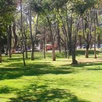Actividades familiares en Bosque Cuauhtémoc: Morelia