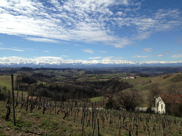 Monforte in The #Langhe : vineyards, the #Alps, & #cloudporn #italy