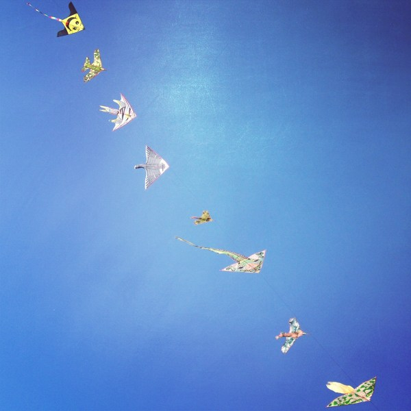 Kites walking by a beach in Italy, on Ms. Adventures in Italy by Sara Rosso