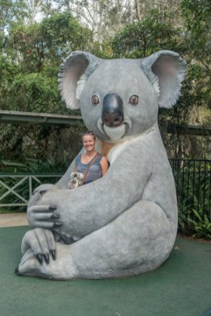 Il est immense ce koala !