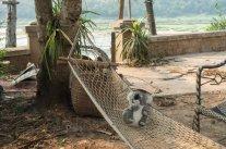 Un peu de repos ne fait pas de mal pour une grande voyageuse comme moi !