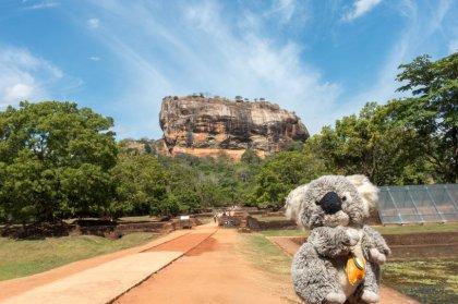 Devant le rocher forteresse de Sigiriya