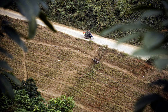 Motorcycle from above in Yunnan Province
