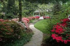 Znaczenie snu ogród