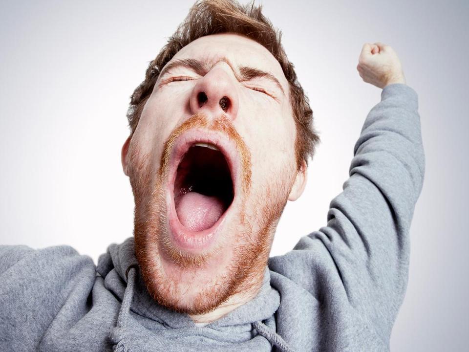 ёжик ебантяй фото зевающих людей желание