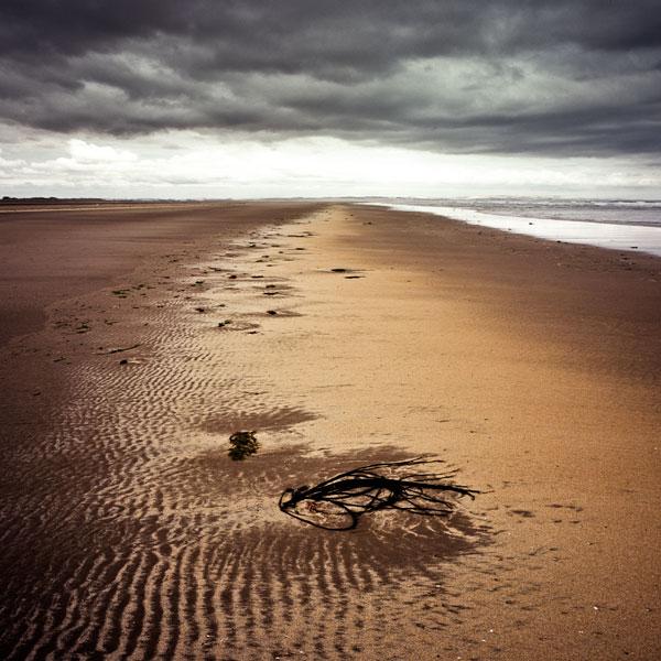 Lindisfarne-north