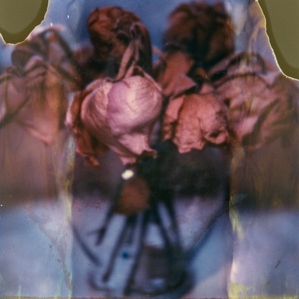 polaroid-glass-flowers009