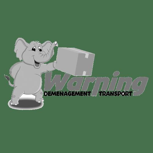 Logo WARNING