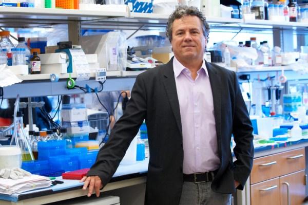 At Work: Cancer Biology and Genetics Program Chair Scott ...