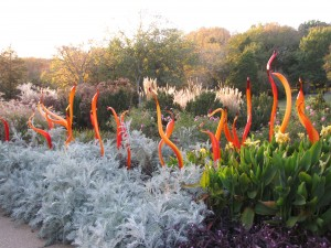 Glass Sculptures by Dale Chihuly at Cheekwood Botanical Gardens