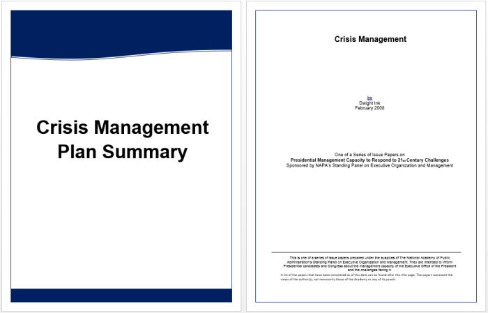 16 Free Executive Summary Templates For Crisis Management