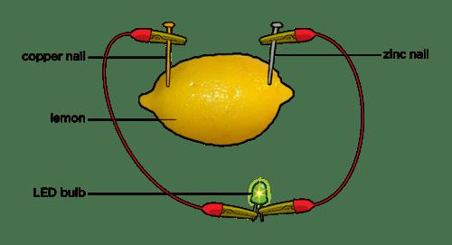 Can Lemon Power Light Bulb