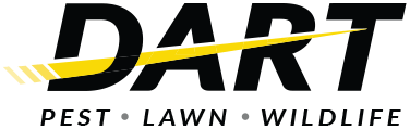 Please welcome Dart Pest Control and owner Jill Rayman to the MSVBN