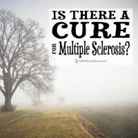 Is There a Cure for Multiple Sclerosis