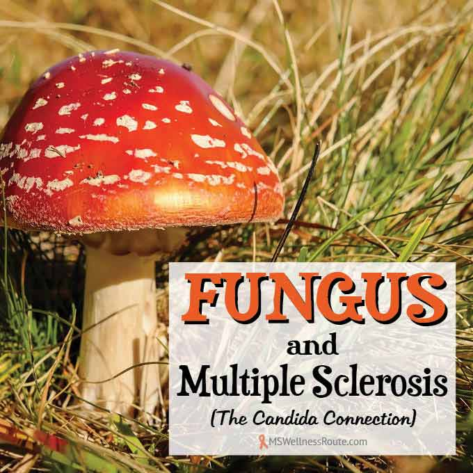 Fungus and Multiple Sclerosis