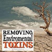Removing Environmental Toxins