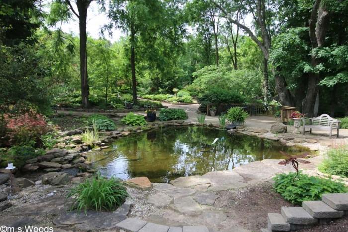 avon-perennial-gardens-pond