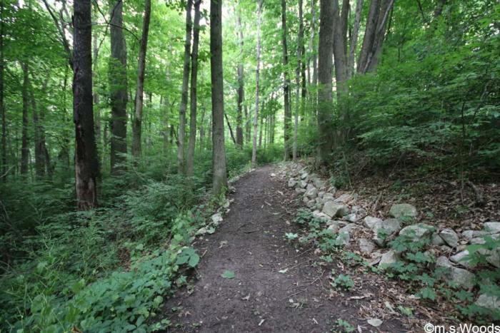 blanton-woods-walking-trail