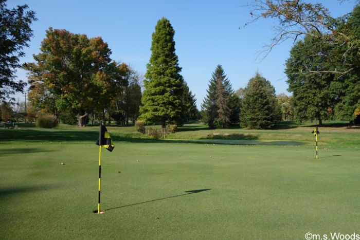 putting-green-eagle-pines-golf-club-mooresville-indiana