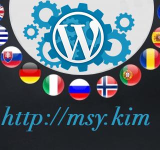 WordPress Sitenizi Çok Dilli Yapın