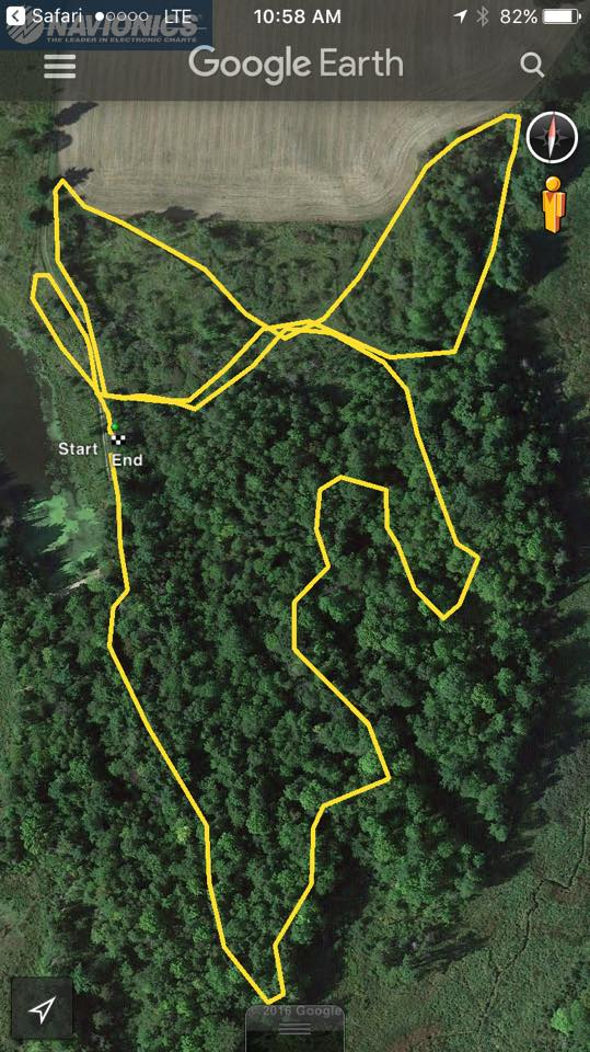 Bike-athlon and Biathlon, Sunday Feb 5 @10am