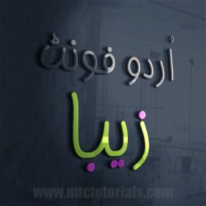 Ziba urdu font mtc
