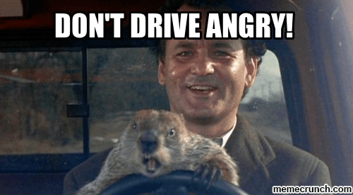 Image result for groundhogs day dont' drive angry
