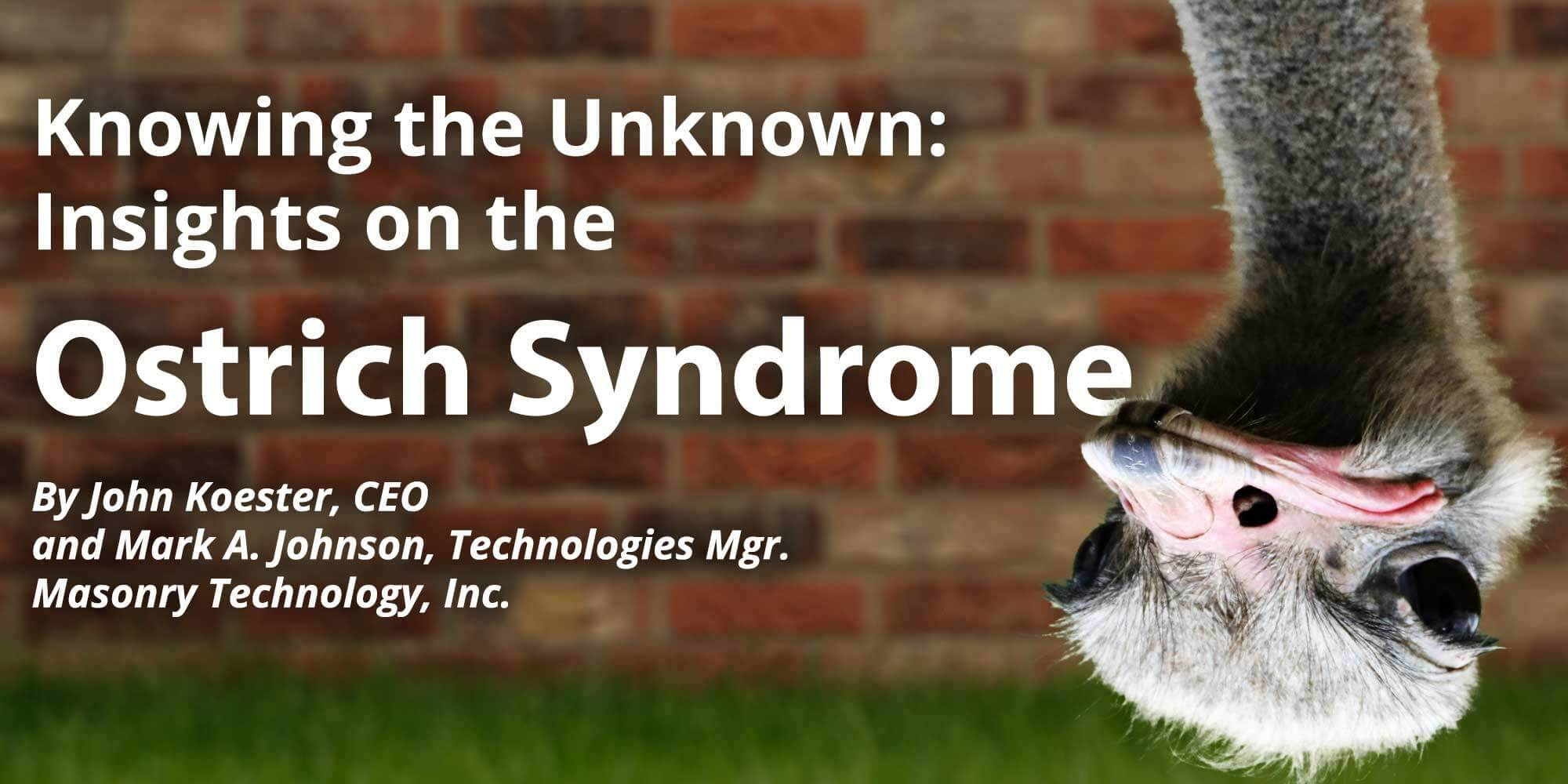 Knowing the Unknown - Insights on the Ostrich Syndrome