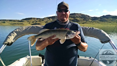 bob-big-walleye