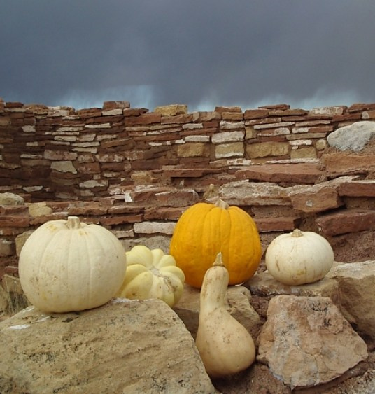 Pumpkins and squash from the farmers market in Flagstaff, Ariz., photographed at the Box Canyon Dwellings in Wupatki National Monument (from SeasonalChef.com)