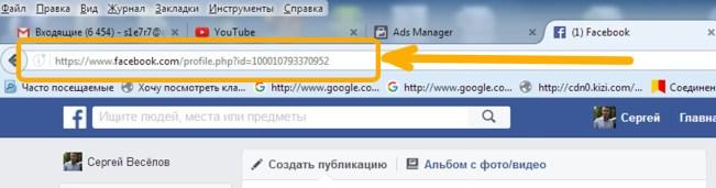 Как правильно ввести необходимые данные, в адресную строку любого браузера.