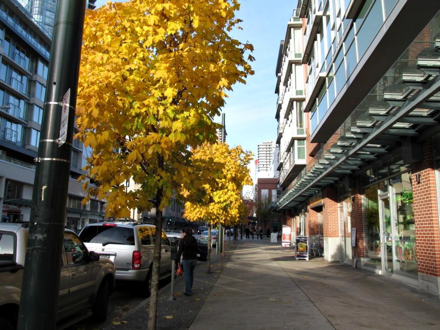 нонец ноября в Ванкувере