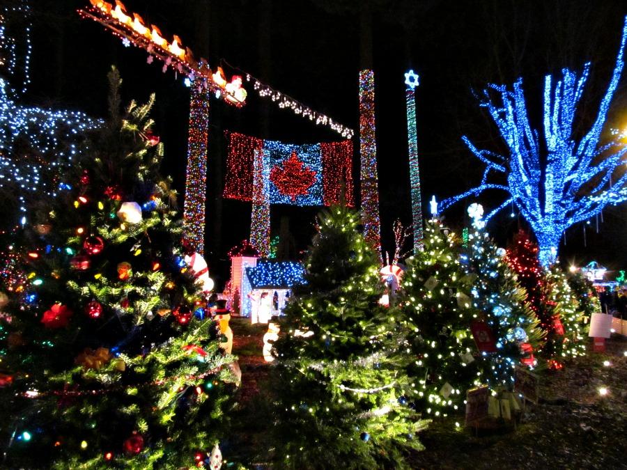 как отмечают Рождество в Ванкувере