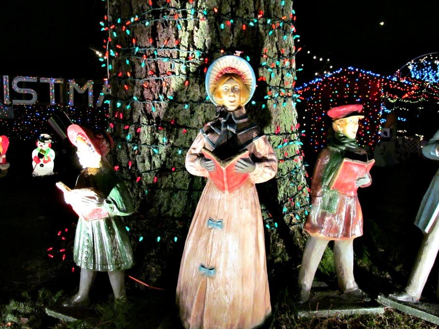рождественские огни в парке