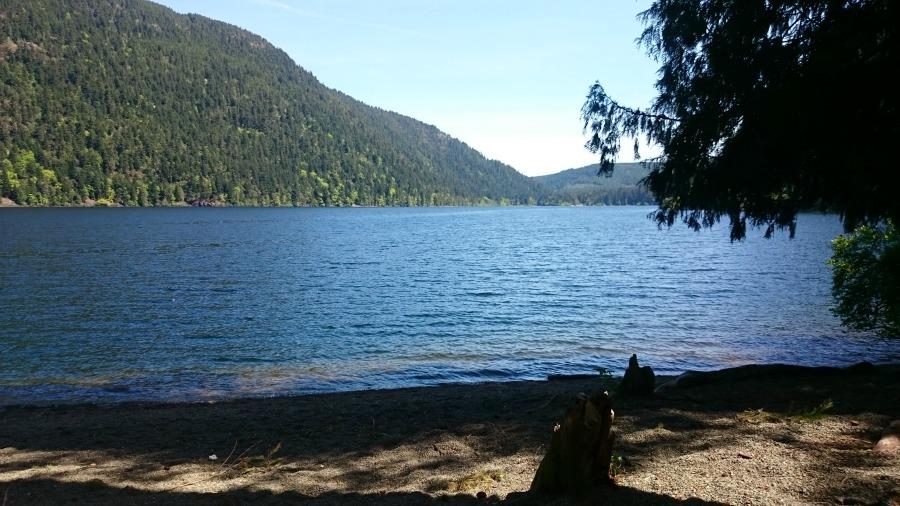 поездка в Тофино, остров Ванкув
