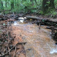 Blowout Spills into the Yough River