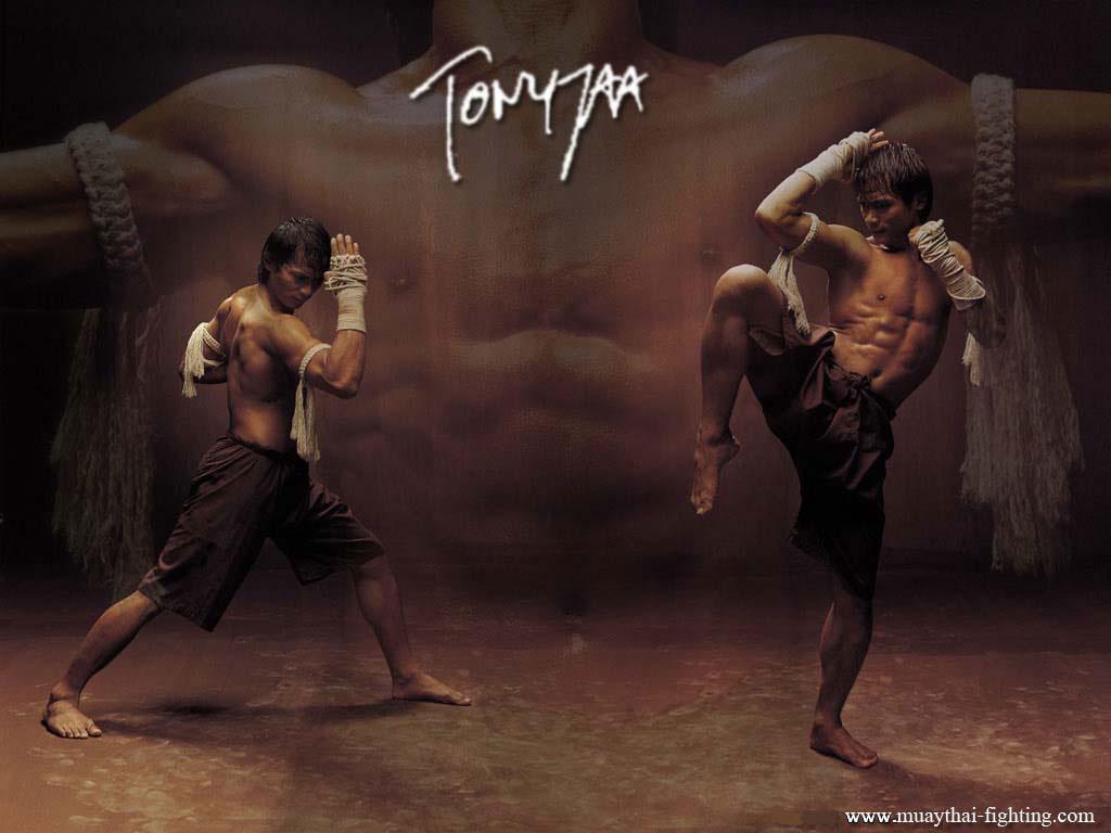 https://i1.wp.com/www.muaythai-fighting.com/images/Muay-Thai-Wallpapers-Tony-Jaa-1.jpg