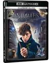 Animales Fantásticos y Dónde Encontrarlos Ultra HD Blu-ray