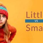 Small กับ Little ต่างกันอย่างไร