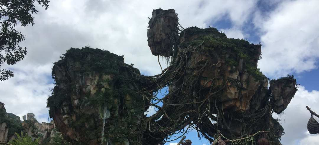 Are the Avatar rides in Disney's Animal Kingdom worth the wait?