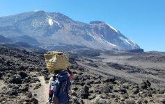 Porter Climbing to Kilimanjaro
