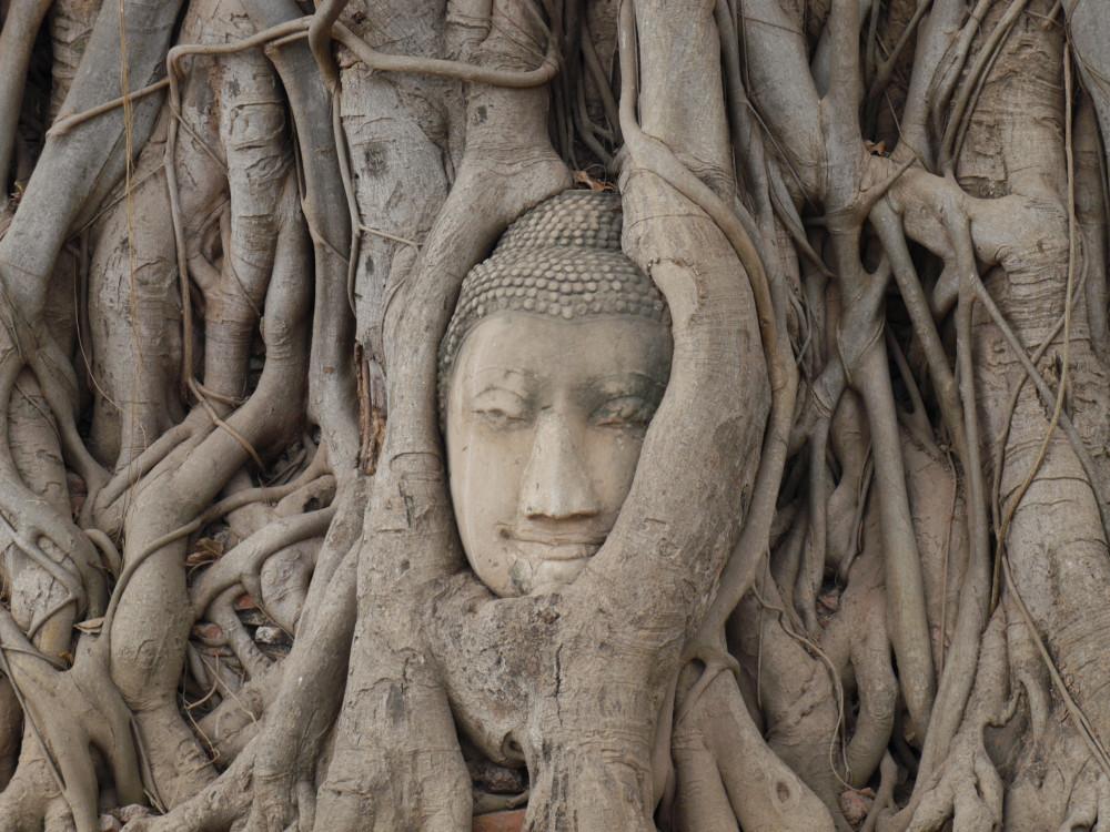 ayutthaya templos tailandia